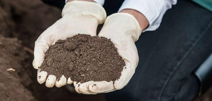 Actualiteit: tijdelijk handelingskader PFAS-houdende grond en baggerspecie van kracht – UPDATE brief minister