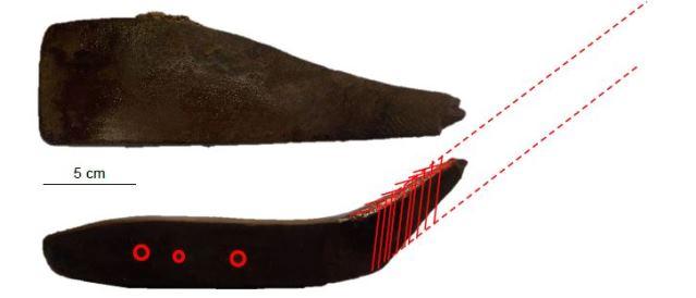 Boven- en zijaanzicht van de kop van de kliek
